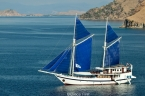 Liveaboards 10703344_komododancer_yacht640.jpg
